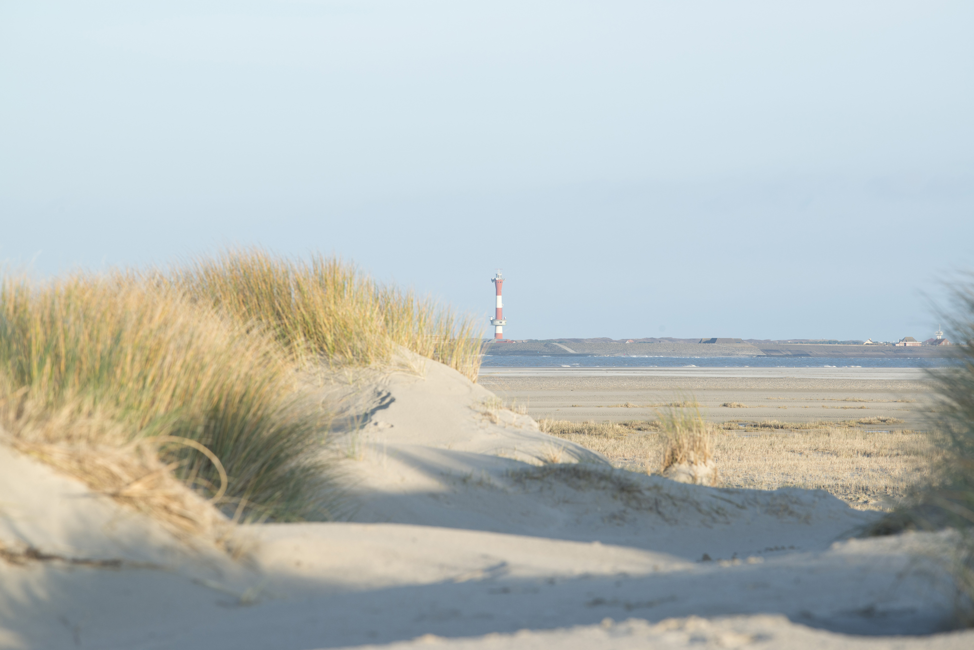 Hilly sand dunes on the coast with grass, and the sea in the distance in a bay, wihth a red and white lighthouse on the other side of the bay